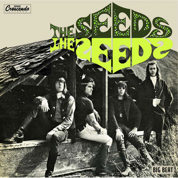 The Seeds debut album gets the deluxe Ace reissue treatment