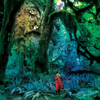 Jacco Gardner – Cabinet of Curiosities (Trouble In Mind)