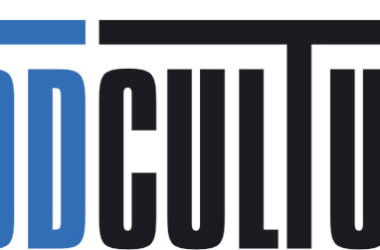 Support the Modculture website